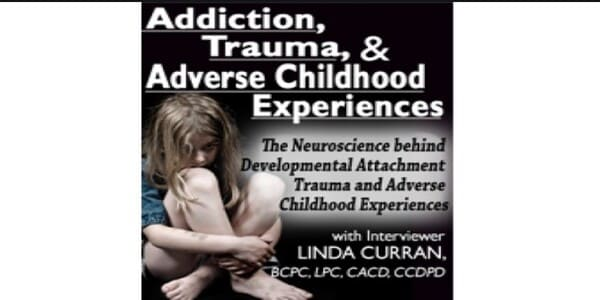 Only $84, Addiction, Trauma and Adverse Childhood Experiences (ACEs):The Neuroscience behind Developmental/Attachment Trauma and Adverse Childhood Experiences