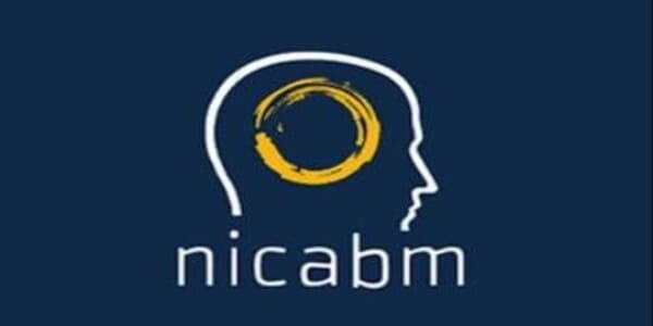 only 28, Brain Science 2011 - NICABM