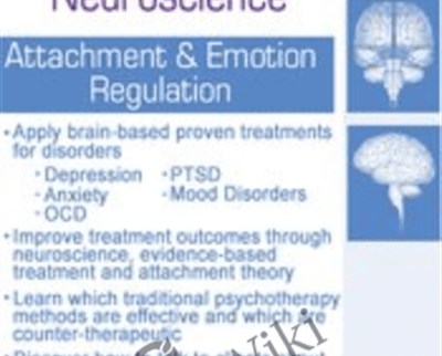 Brain-Based Therapy and Practical Neuroscience: Attachment and Emotion Regulation - Jennifer Sweeton